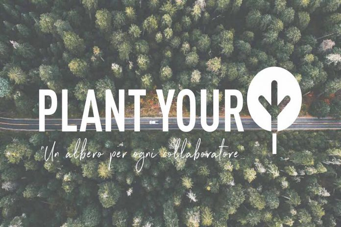 Atiproject plant your tree